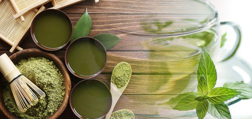 The amazing benefits of green tea